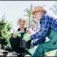 Arts,-crafts-an-gardening-for-the-elderly